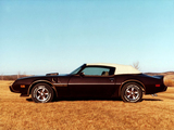 Images of Pontiac Firebird Trans Am Convertible by Contec 1981