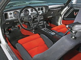 Images of Pontiac Firebird Trans Am Turbo Pace Car 1981