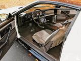 Images of Pontiac Firebird Trans Am 1983–85