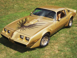 Photos of Pontiac Firebird Trans Am 6.6 L80 1979