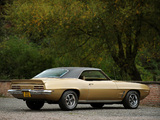 Pontiac Firebird (2337) 1969 photos