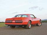 Pontiac Firebird Formula 1976 pictures