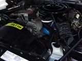 Pontiac Firebird Trans Am Turbo 1980 images