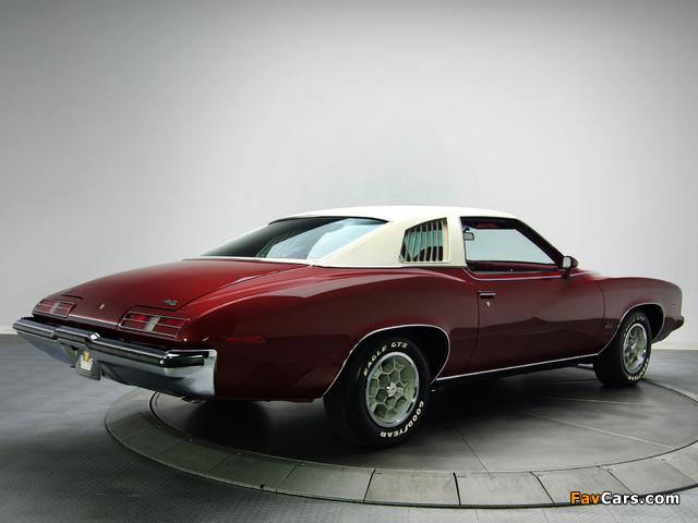 Pontiac Grand Am Solonnade Hardtop Coupe (H37) 1973 pictures (640 x 480)