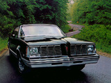 Pontiac Grand Am Coupe 1978–80 wallpapers