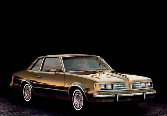 Image result for 1981 pontiac lemans