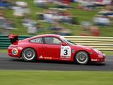 Photos of Porsche 911 GT3 Cup (997) 2008