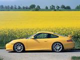 Pictures of Porsche 911 GT3 (996) 2003–05