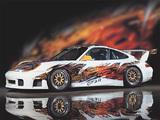 Pictures of Porsche 911 GT3 R (996) 1999–2000