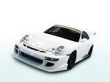 JNH Porsche 911 GT3 (996) 2006 photos