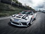 Porsche 911 GT3 Cup (991) 2017 wallpapers