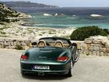Porsche Boxster (987) 2009–12 pictures
