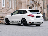 Images of Cargraphic Cayenne KTC 300 (958) 2010