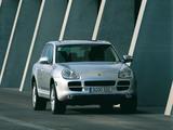 Porsche Cayenne S (955) 2002–07 photos