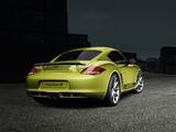 Images of Porsche Cayman R (987C) 2010