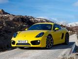 Images of Porsche Cayman S UK-spec (981C) 2013
