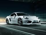 Photos of TechArt Porsche Cayman (981C) 2013