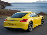 Photos of Porsche Cayman S UK-spec (981C) 2013