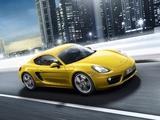 Photos of Porsche Cayman S (981C) 2013