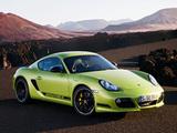 Pictures of Porsche Cayman R (987C) 2010