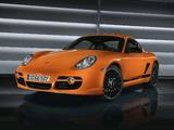 Porsche Cayman S Sport Limited Edition (987C) 2008 photos