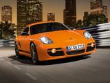 Porsche Cayman S Sport Limited Edition (987C) 2008 pictures
