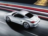 Porsche Cayman S (987C) 2009 pictures