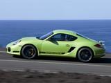 Porsche Cayman R (987C) 2010 images