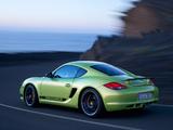 Porsche Cayman R (987C) 2010 pictures