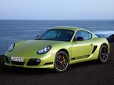 Porsche Cayman R (987C) 2010 wallpapers