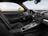 Porsche Cayman S (981C) 2013 images