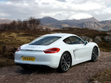 Porsche Cayman UK-spec (981C) 2013 photos