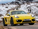 Porsche Cayman S UK-spec (981C) 2013 photos