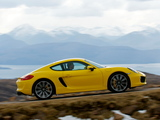Porsche Cayman S UK-spec (981C) 2013 pictures