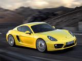 Porsche Cayman S (981C) 2013 wallpapers