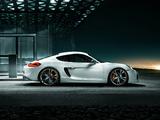 TechArt Porsche Cayman (981C) 2013 wallpapers