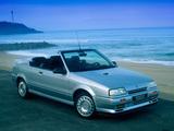 Pictures of Renault 19 Cabrio 1990–92