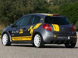 Photos of Renault Clio R3 2010–12