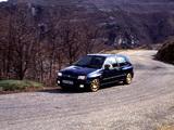 Renault Clio Williams 1993 photos