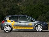 Renault Clio R3 2010–12 photos