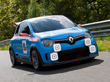 Pictures of Renault TwinRun Concept 2013