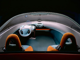 Renault Racoon Concept 1993 images