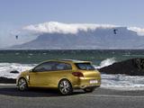 Renault Clio Grandtour Concept 2007 photos