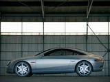 Renault Fluence Concept 2004 photos