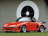 Rinspeed Porsche R59 wallpapers