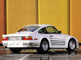 Pictures of Rinspeed Porsche R69 (930) 1985–89