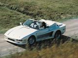 Rinspeed Porsche R69 (930) 1985–89 images