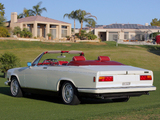 Pictures of Rolls-Royce Camargue Retractable Hardtop by Niko-Michael Coachworks 1987