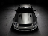 Saleen S302 Extreme 2008–11 wallpapers