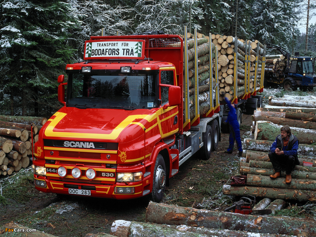 Images of Scania T144G 530 6x4 Timber Truck 1995–2004 (1024 x 768)